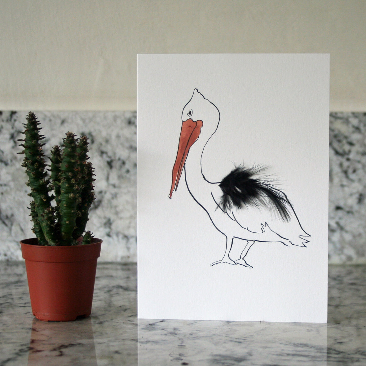 Pelican Real Feather Cards