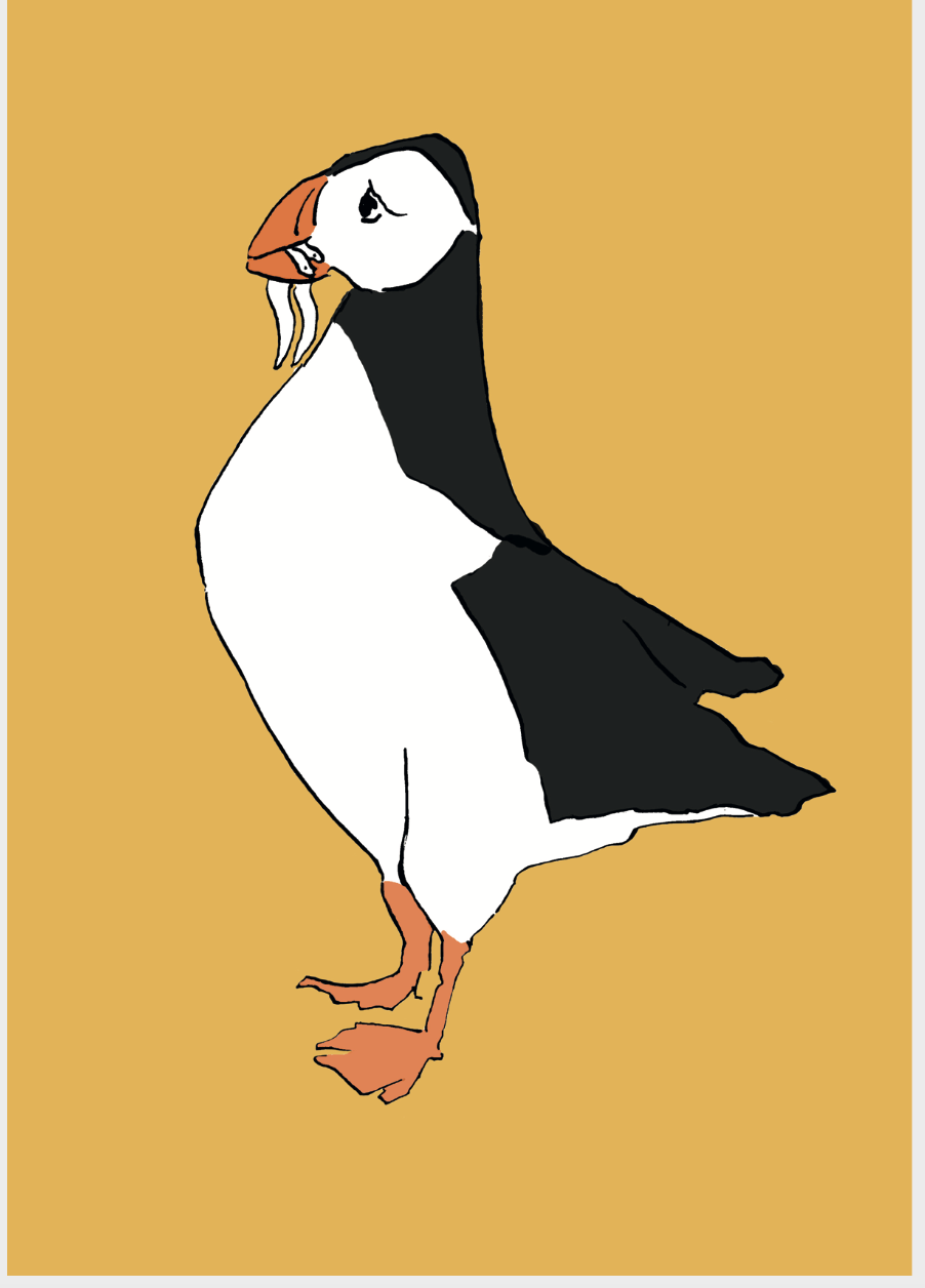 Puffin Giclee Print
