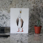 Load image into Gallery viewer, Duck Set of 6 cards in a tin