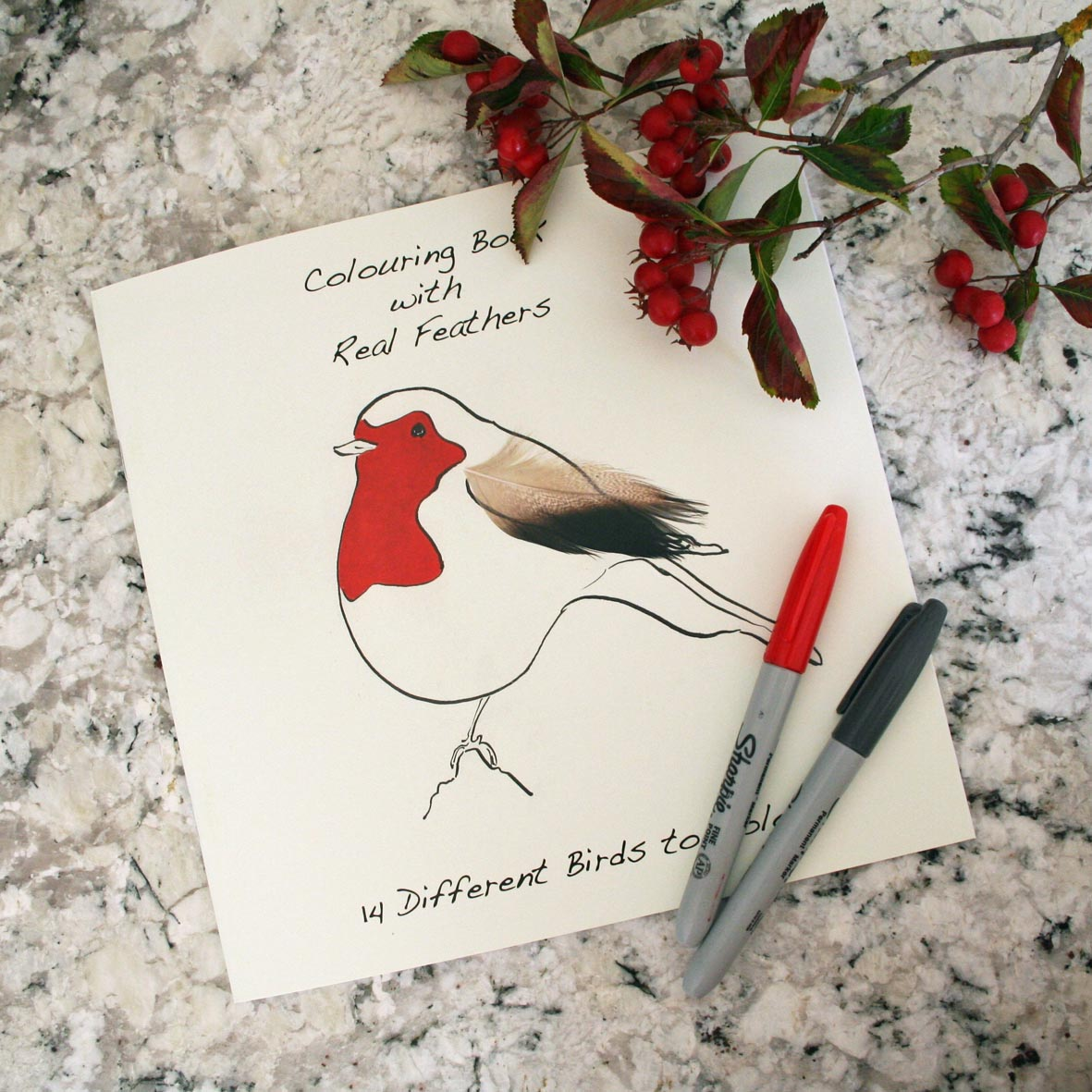 Colouring Book with Feathers for sticking