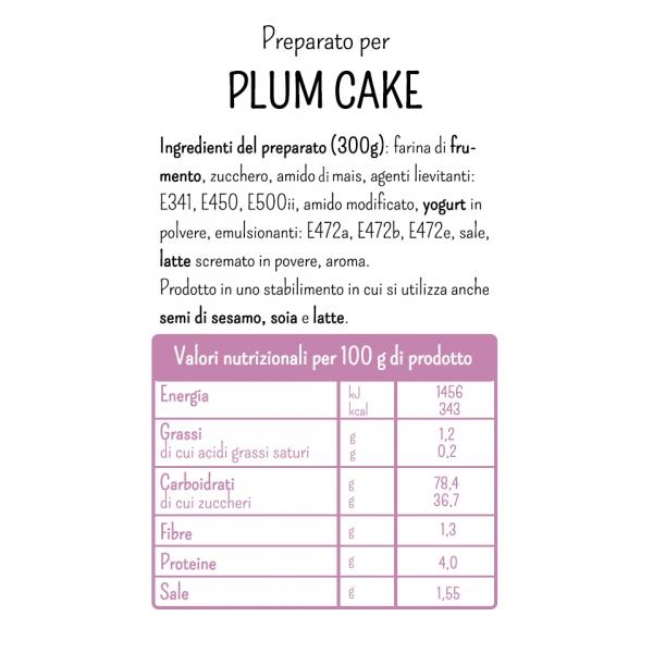 Mix for Plum Cake by Molino Rossetto - 10.59 oz