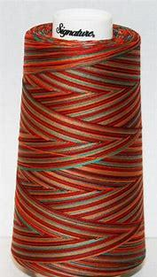 Signature Quilting Thread Variegated Southwest