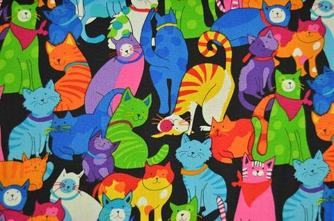 Multi Brite Cats on black