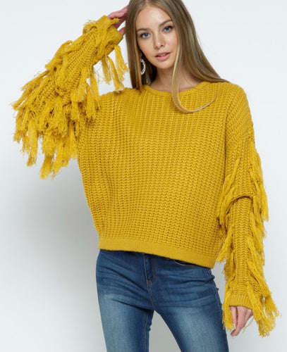 Shimmy Shake fringe sleeve sweater