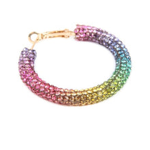 Lucky Charm Rainbow Crystal Hoops