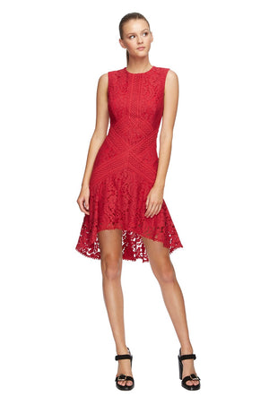 Lover Melody Lace Flare Dress in Raspberry