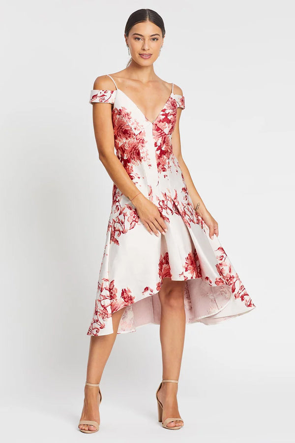 Nicola Finetti Emilia Dress in Pink Roses