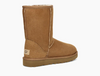 Image of UGG Classic Short II Boot - Chestnut