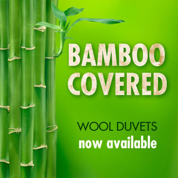 Bamboo covered wool filled pillows are now available at SleepySheep.ca