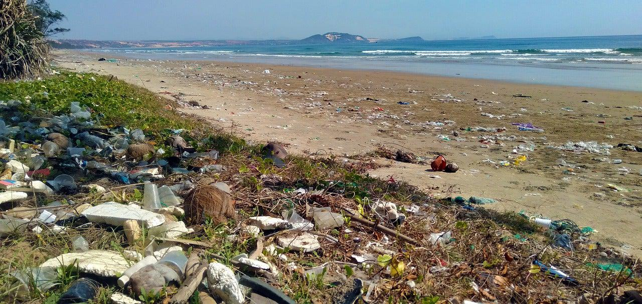 Beach covered in plastic waste