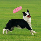 Tooth Resistant PVC Training Frisbee For Small Puppy