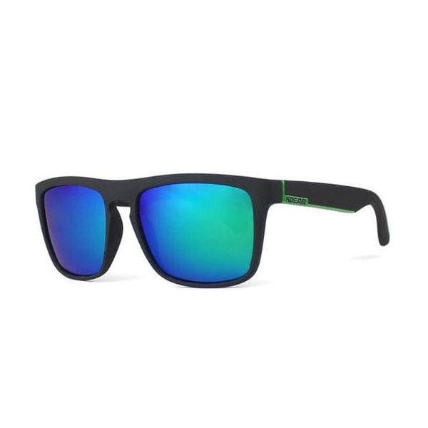 Polarised Wayfarer Sunglasses - Northern Lights - Havana86