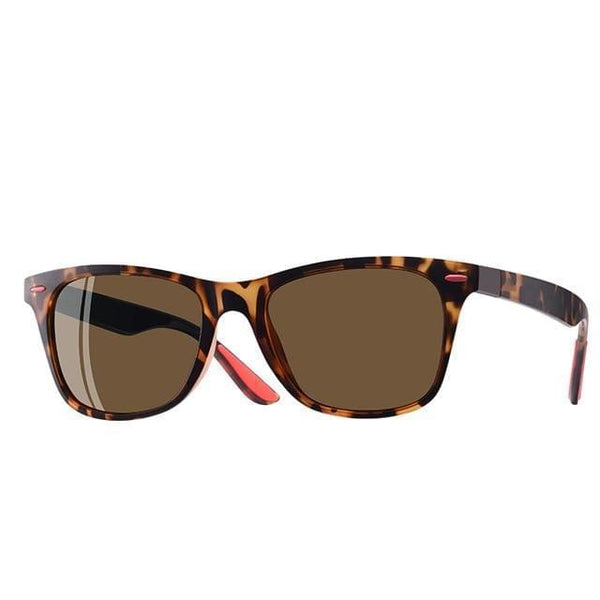 Polarised Wayfarer Sunglasses - Tortoise Shell - Havana86