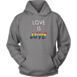 'Love is Love' Gay Pride Rainbow LGBTQ+ Men's Hoodie - Havana86