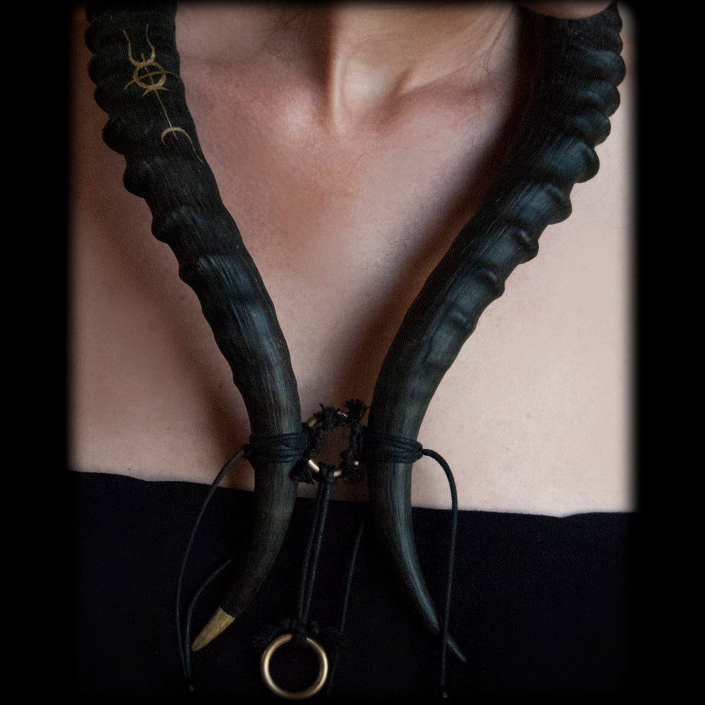 Blesbok Horn Necklace