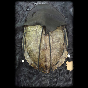Large Turtle Pouch