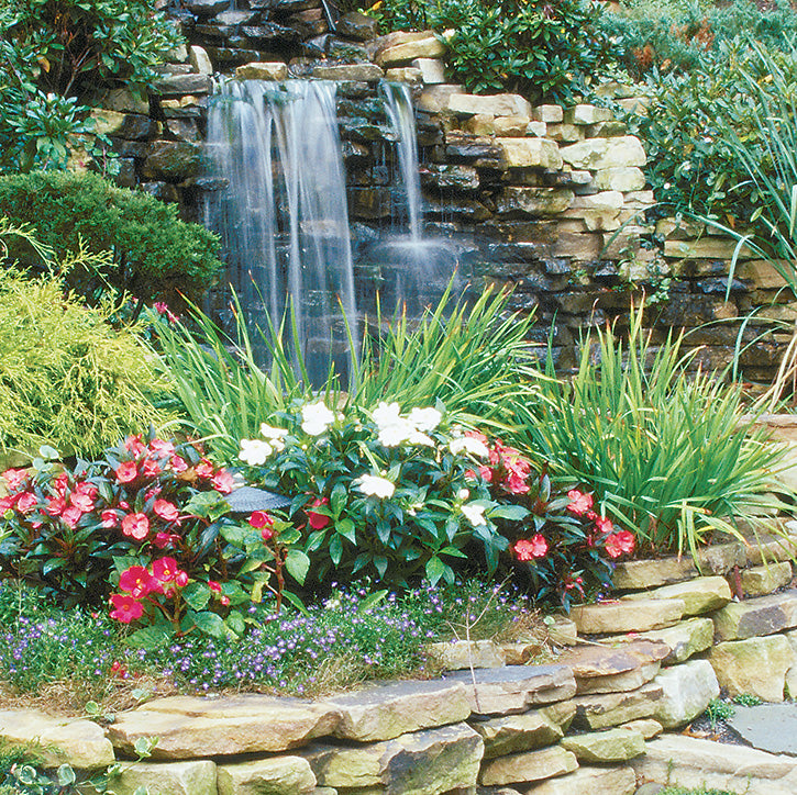 Focal Points and Accents Garden Article
