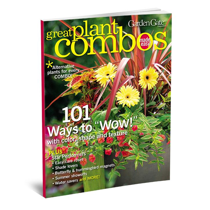 Great Plant Combos Made Easy, Volume 1