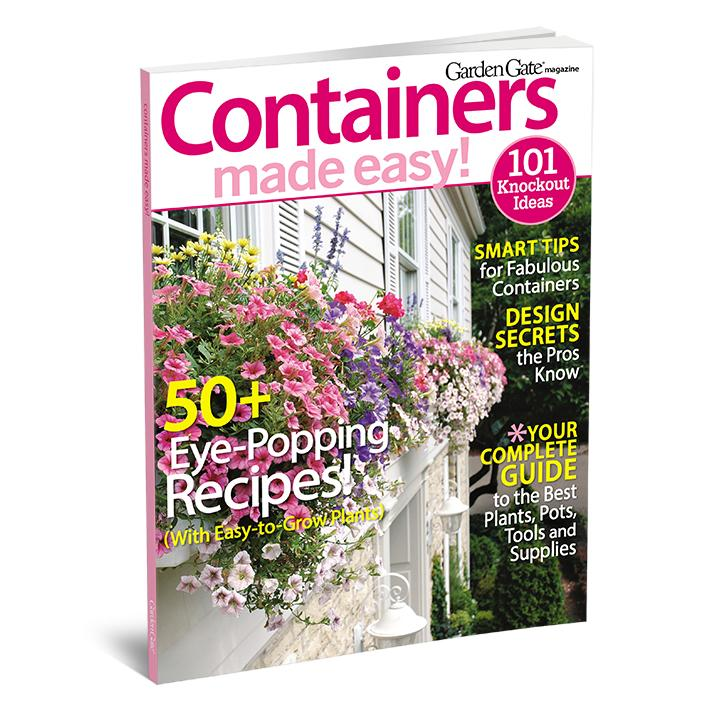 Containers Made Easy, Volume 1