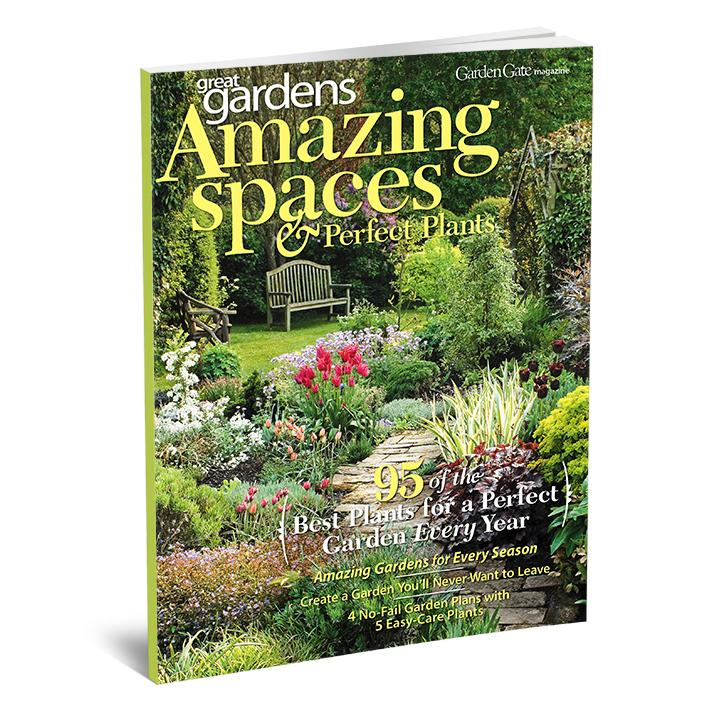 Amazing Spaces & Perfect Plants