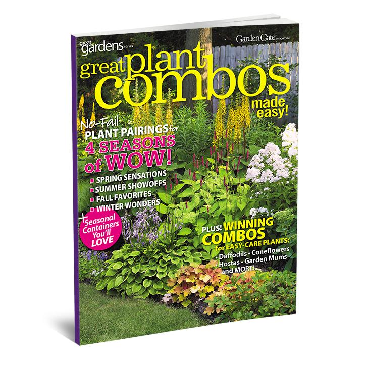 Great Plant Combos Made Easy Volume 2