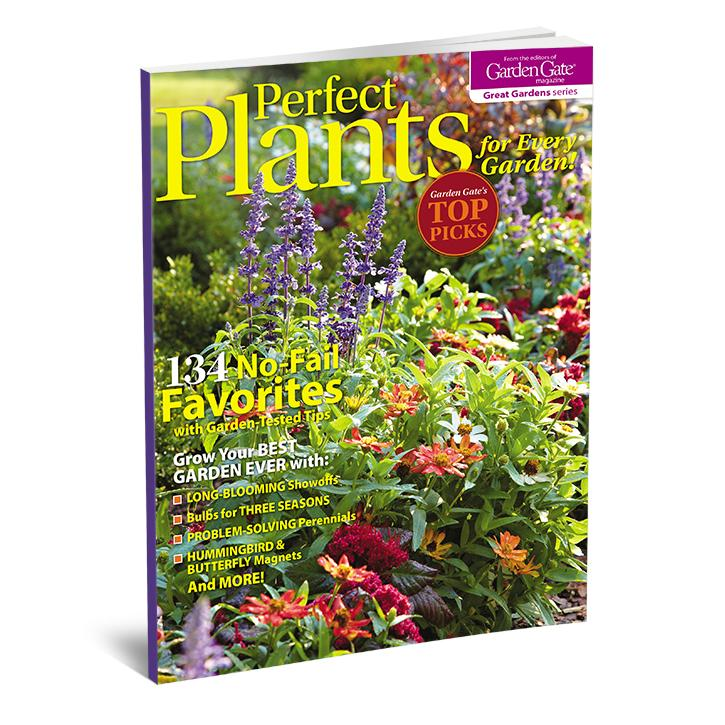 Perfect Plants for Every Garden