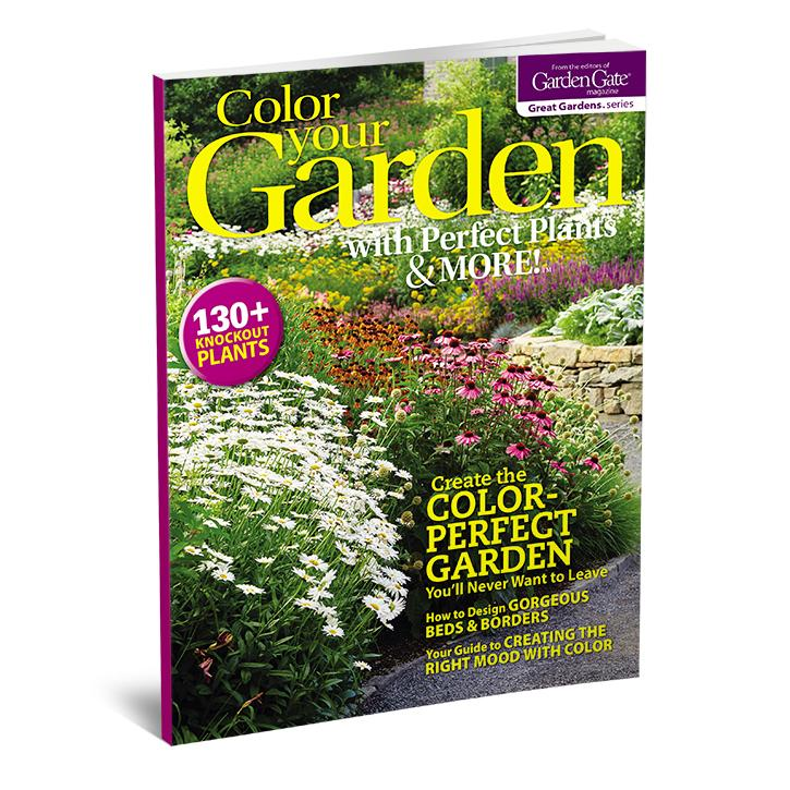Color Your Garden