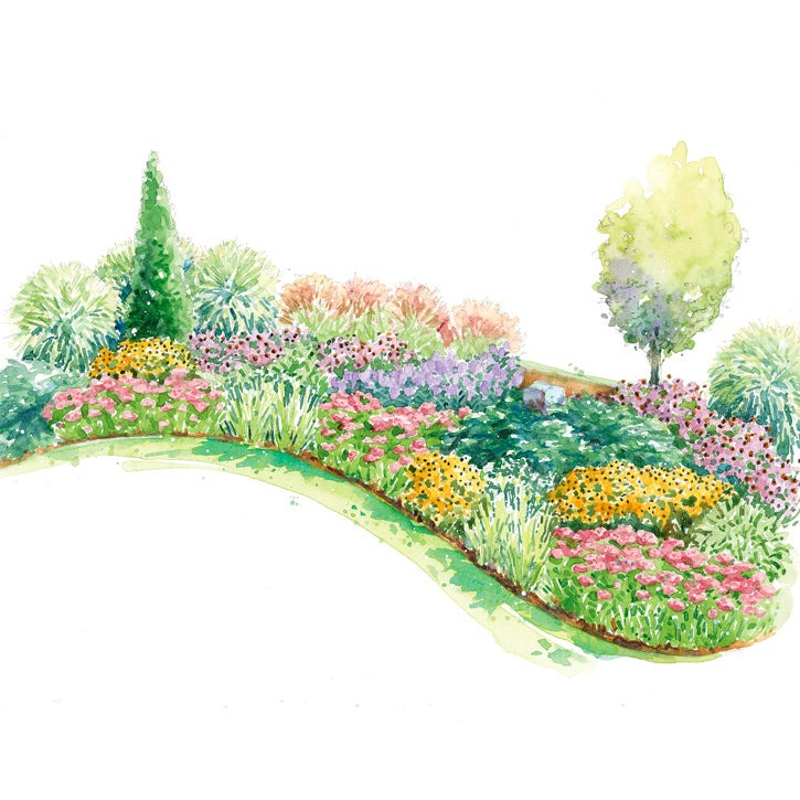 Tapestry Under a Tree Garden Plan
