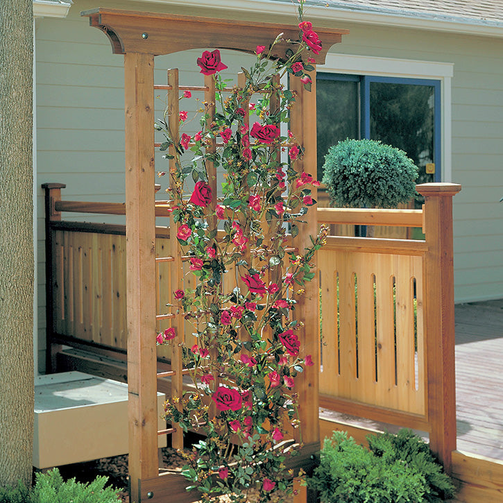 Garden Trellis Wood Project