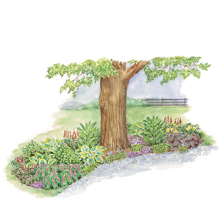 Island Beneath a Tree Garden Plan