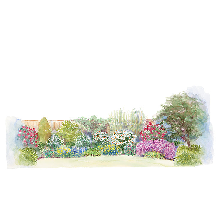 Mix and Match Border Garden Plan