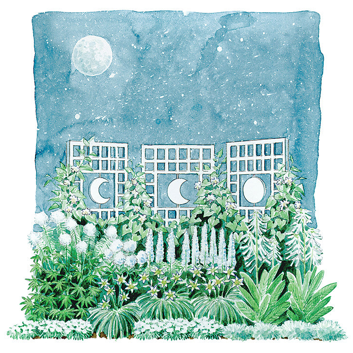 Moonlight Garden Plan