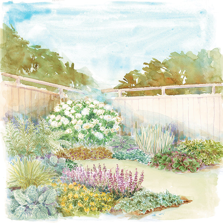 Backyard Border Garden Plan