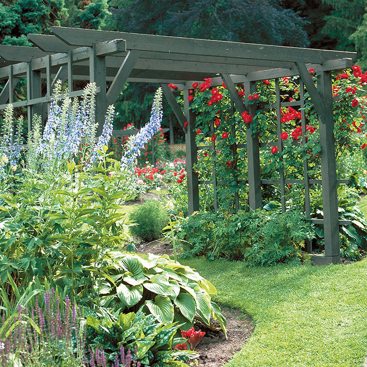 Pergolas Garden Article