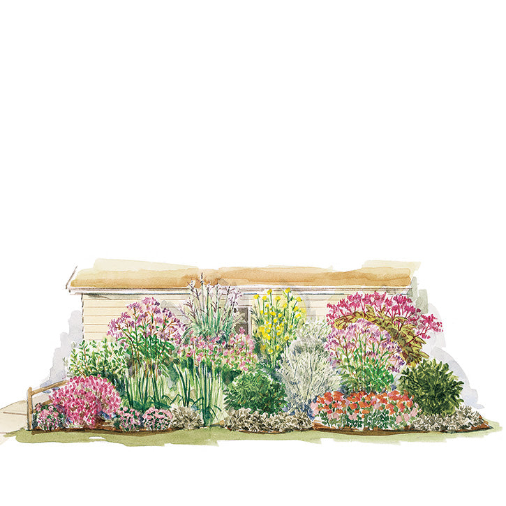Pink and Purple Border Garden Plan