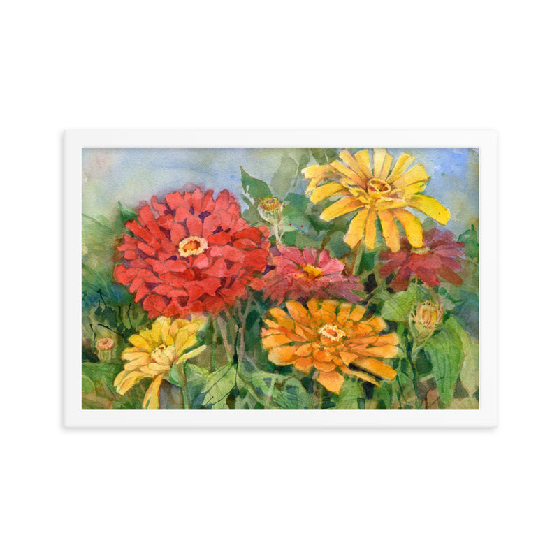 Zinnia Illustration Framed Print