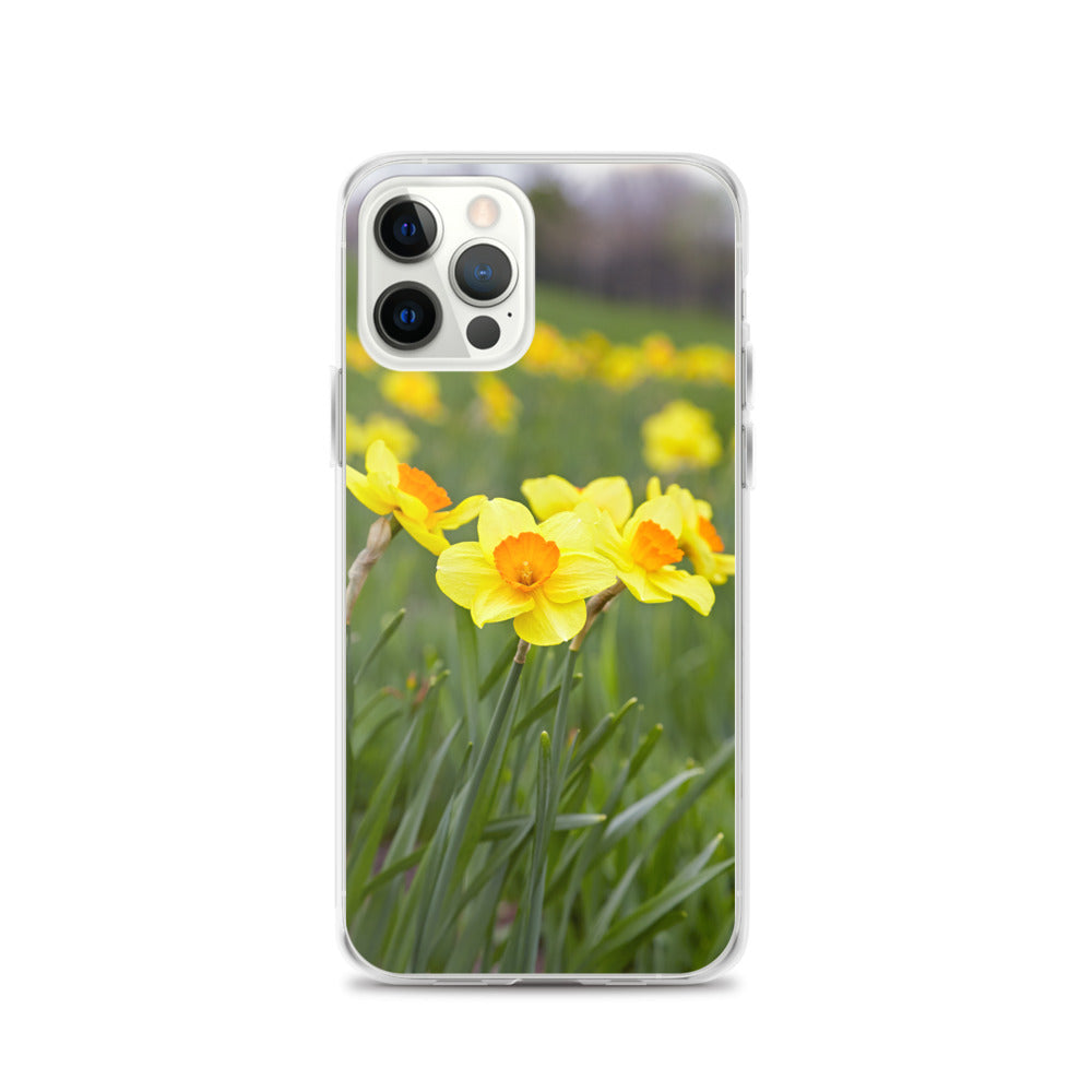 Yellow and Gold Daffodils iPhone Case
