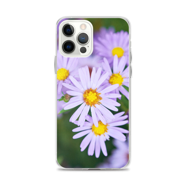 Fall Aster iPhone Case