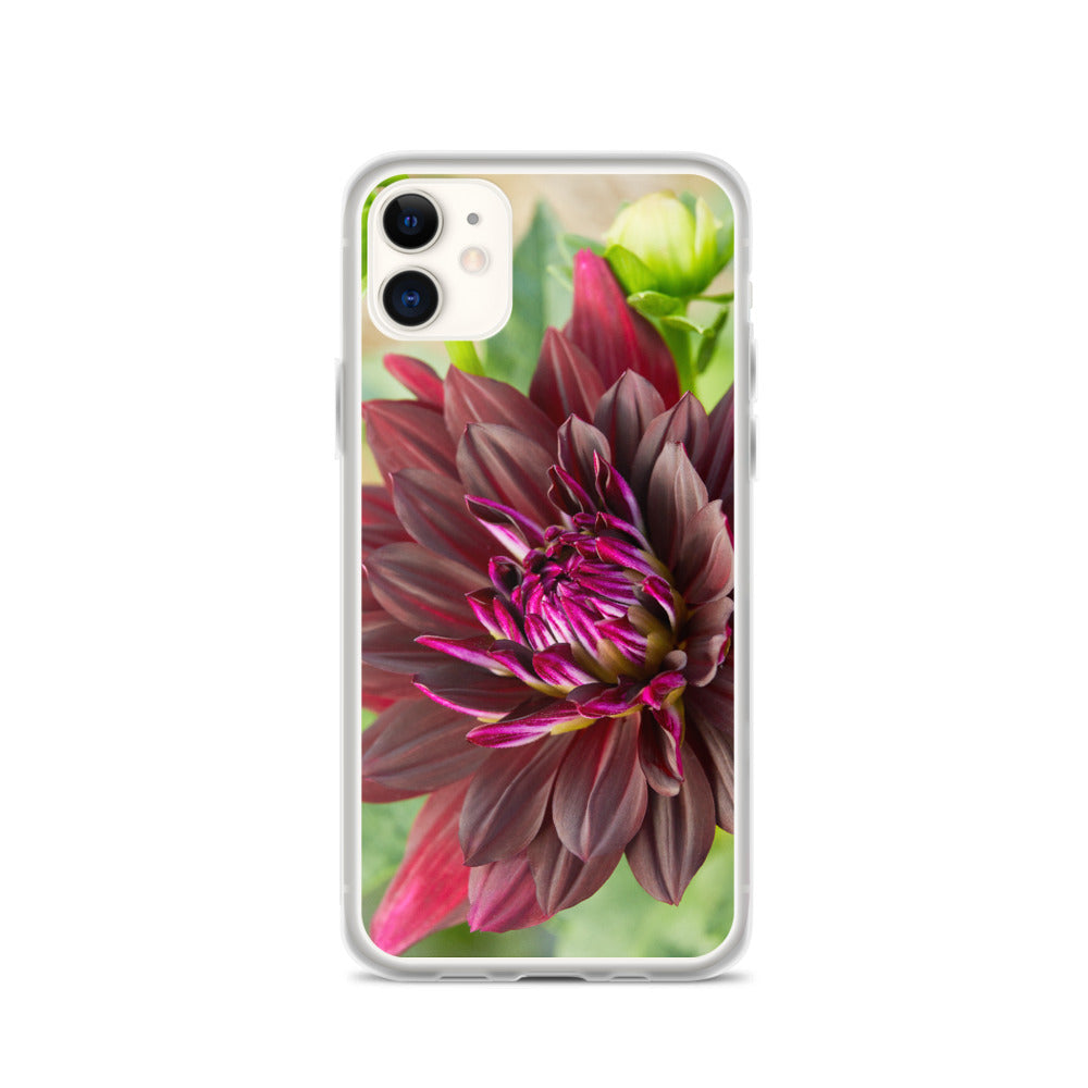 Black Dahlia iPhone Case