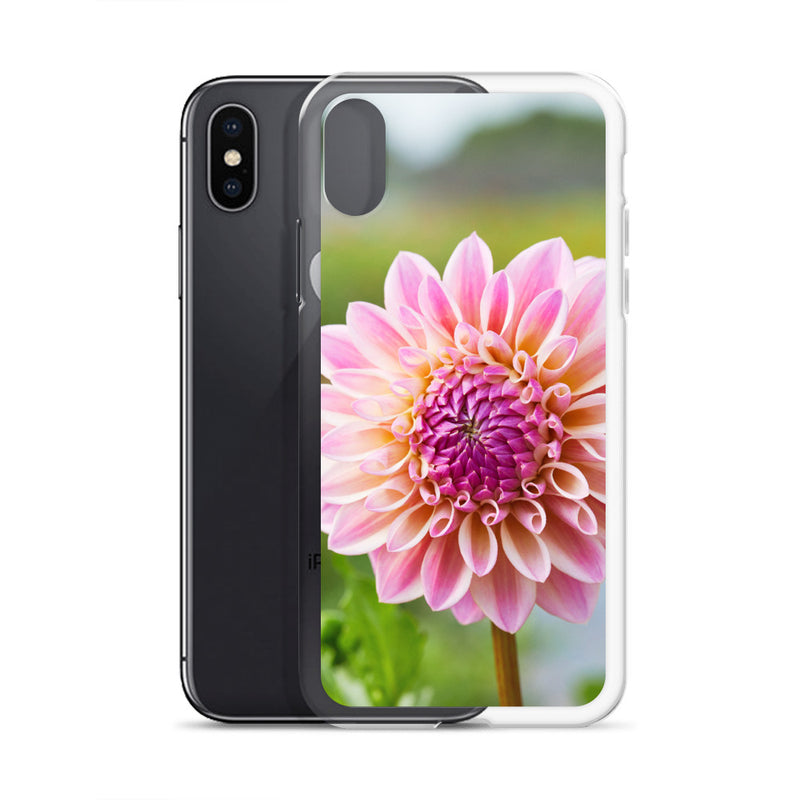 Pink Dahlia iPhone Case