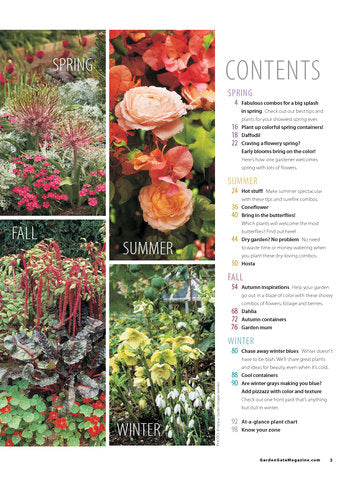 Great Plant Combos Made Easy, Volume 2