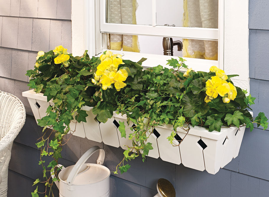 Charming Windowbox Planter Box