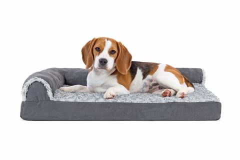 FurHaven Deluxe Orthopedic Chaise Dog Couch + Animal Psychology Online Course Bundle