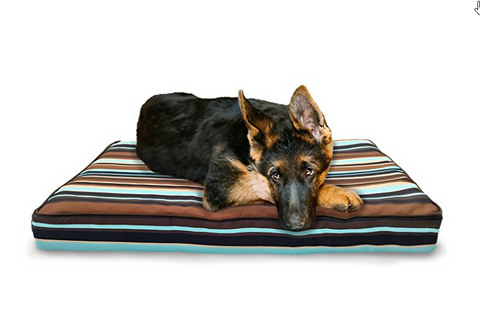 Deluxe Orthopedic Polycanvas Water Resistant Mattress Pet Bed
