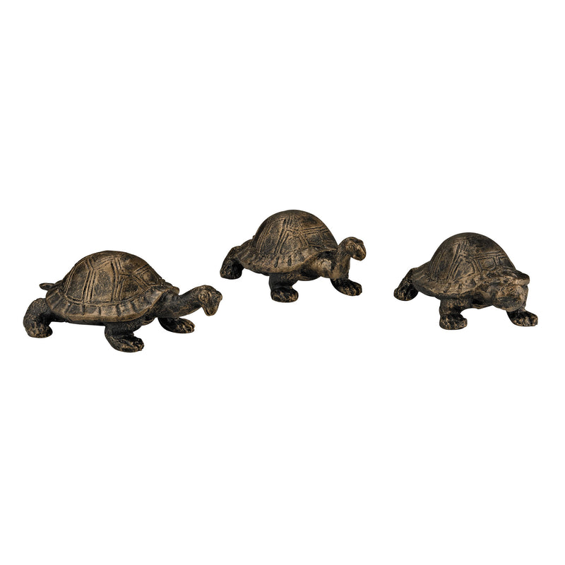 BOX TURTLES - BRONZE WITH HIGHLIGHT
