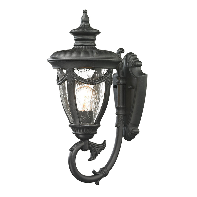 Anise 1 Light Outdoor Sconce In Textured Matte Black - Textured Matte Black