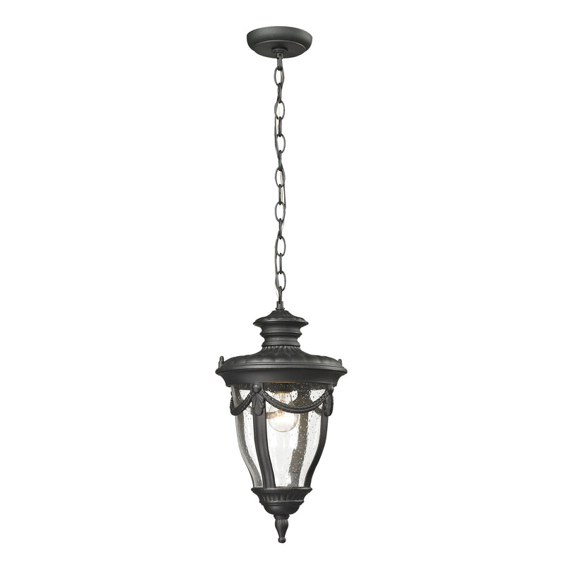 Anise 1 Light Outdoor Pendant In Textured Matte Black - Textured Matte Black