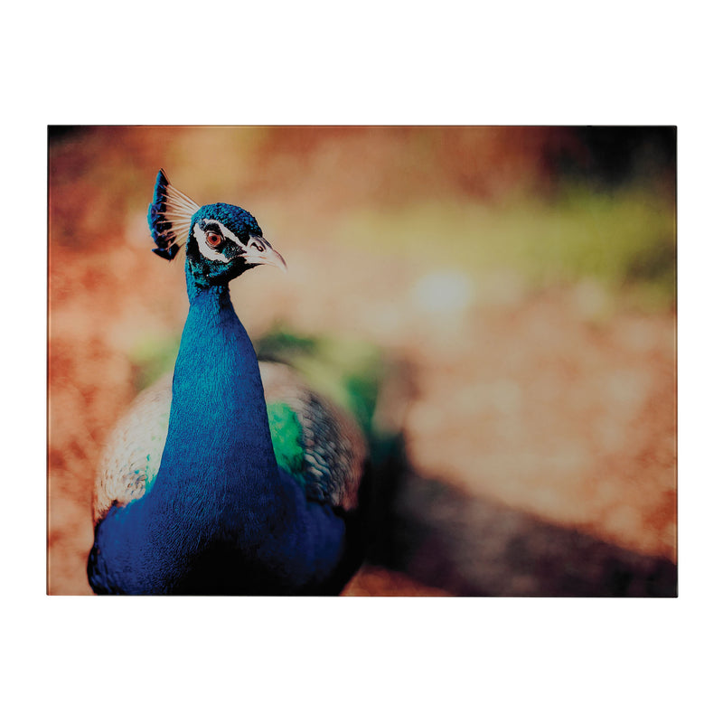 MIN 2-PEACOCk PHOTOGRAPH PRINTED ON GLASS - _
