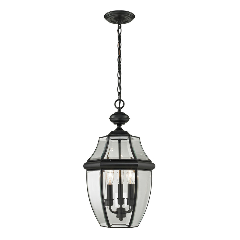 Ashford 3 Light Outdoor Pendant In Black - Black