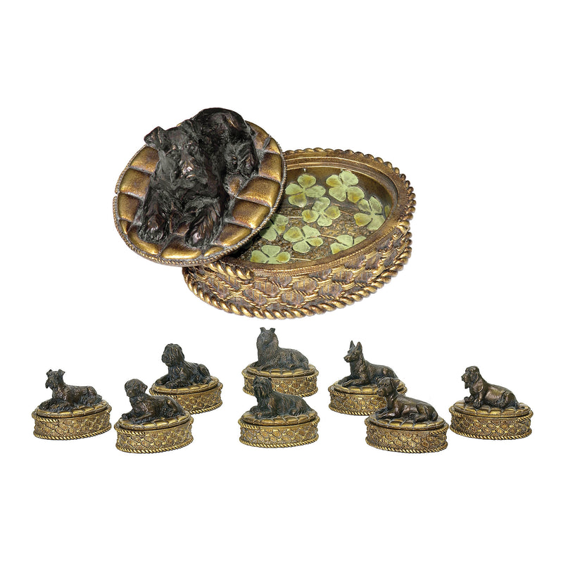 SET/8 LUCkY DOG BOXES -